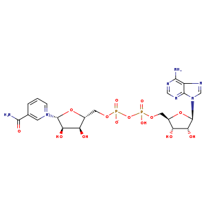 2D chemical structure of 53-84-9
