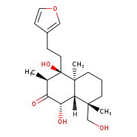 2D chemical structure of 63543-36-2